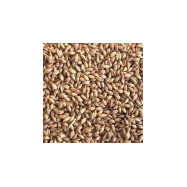 Golden Promise Pale Ale Malt