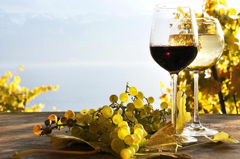 Vína a příslušenství